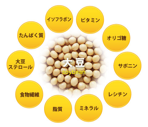 大豆に含まれる栄養成分一覧