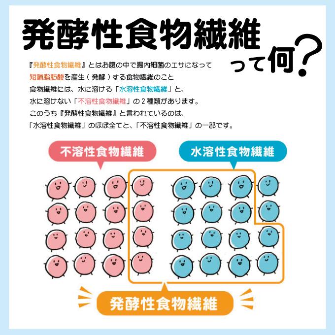 発酵性食物繊維