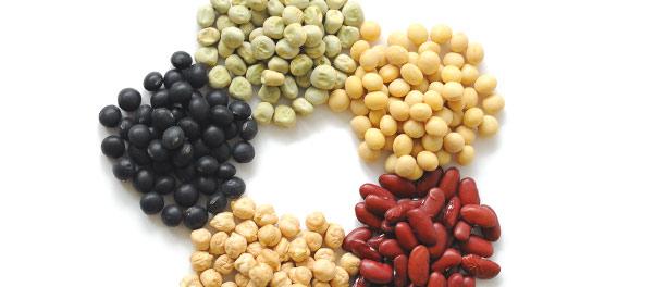 乾燥大豆5種
