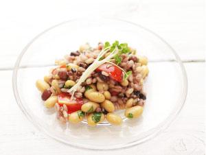 蒸し大豆と雑穀の 中近東風サラダ